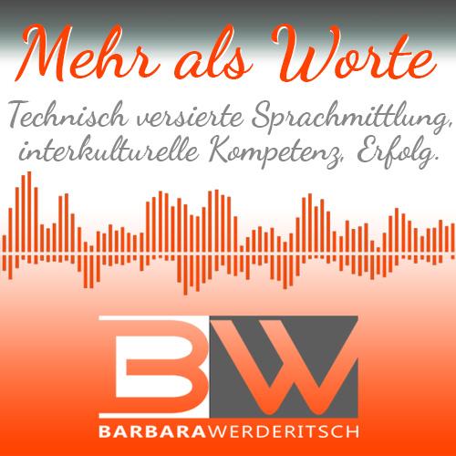 Banner Barbara Werderitsch Mehr als Worte